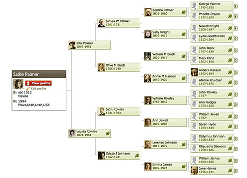 create a family tree online free